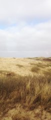 Sylt Dünen