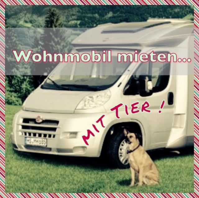 Wohnmobil mieten …mit Hund !