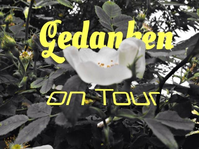 Papenburg und die Gedanken / Fragen on Tour… ;-)