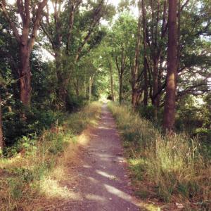 Spreewald Wege