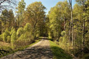 Die typisch schwedischen Strassen abseits von Städten und großen Strassen