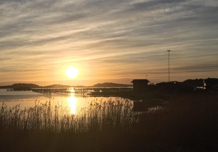 So schön können Abende in Schweden sein, Ruhe, Erholung und eine tolle Natur! Camping in Schweden Tipps