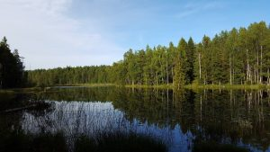 Wild Campen in Schweden- Tived