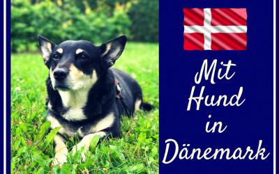 Dänemark mit Hund – Dänemark SPEZIAL 2017