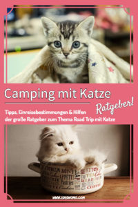 Camping mit Katze, Wohnmobiltour mit Katze