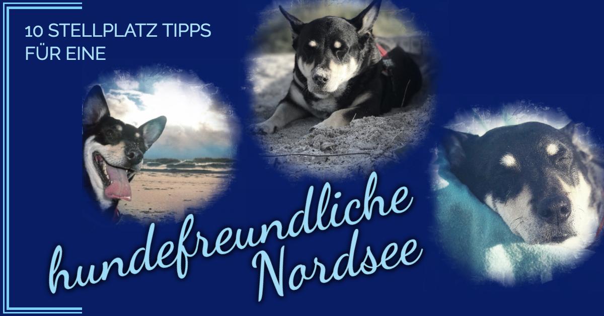 Hundefreundliche Stellplätze Nordsee