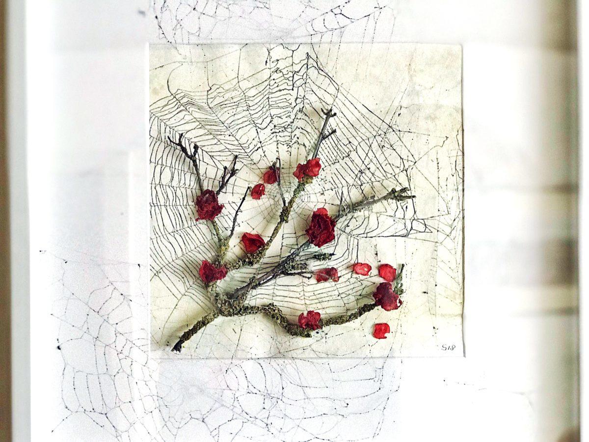 Bild für Spinnen Fans