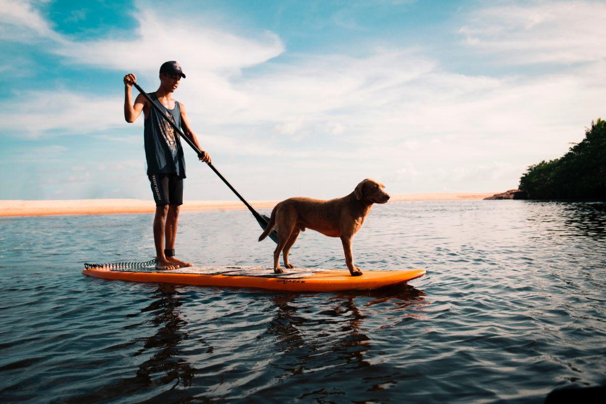 Stand up Paddling und Camping