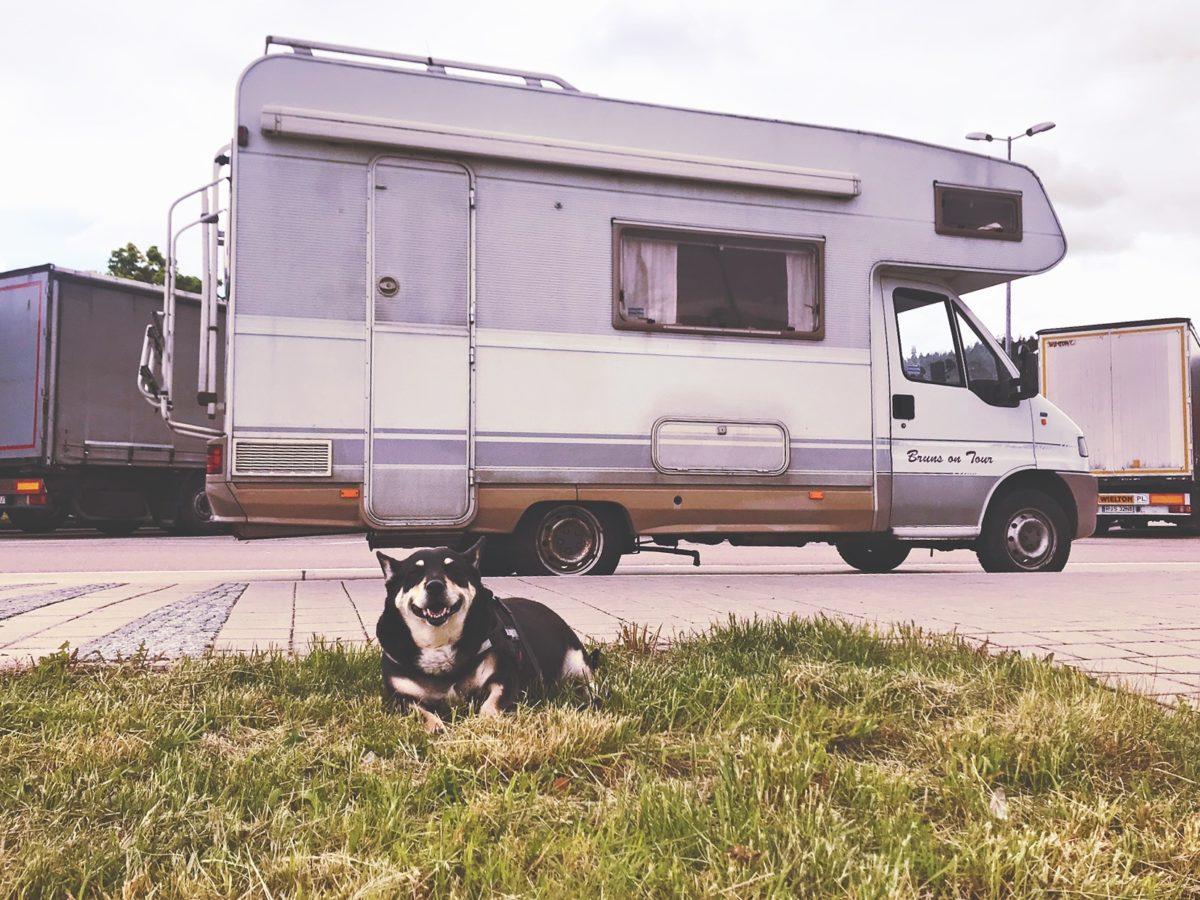 Wohnmobilblog mit Hund