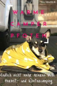 Endlich warme Camping Hunde dank beheizter Hundedecke