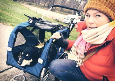 Campingblogger