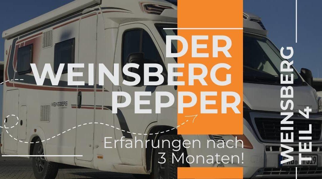 Weinsberg Pepper – Halbzeitbilanz nach 3 Monaten Mister Pepper