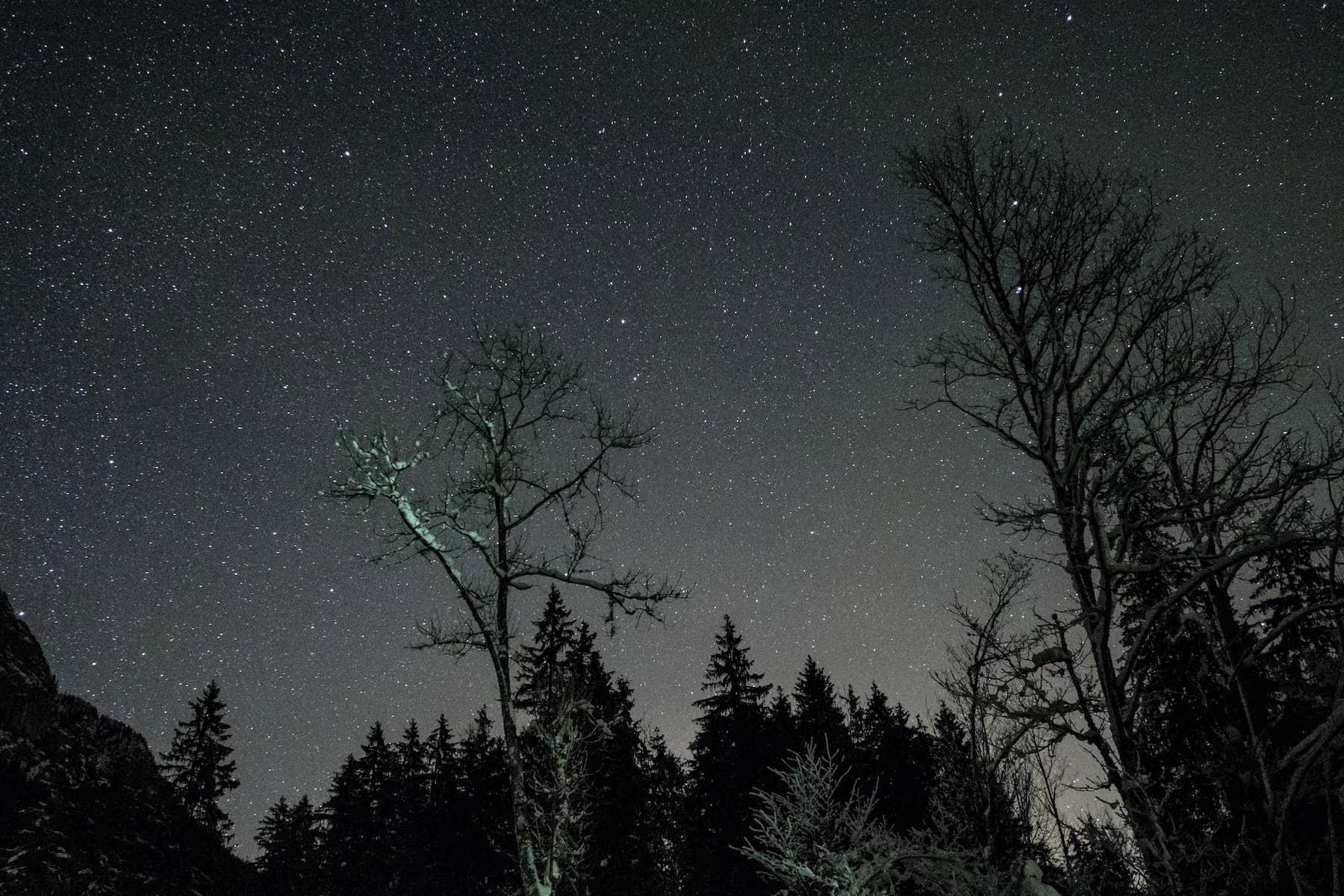 Camper Ausflugsziele im eigenen Bundesland