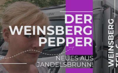 Pepper Reisemobil – News aus Jandelsbrunn