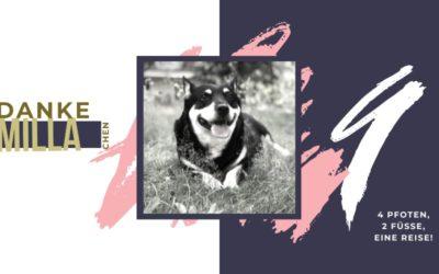 Ein Hundeleben lang… DANKE MILLA