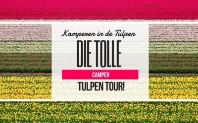Kamperen in de Tulpen – Die tolle Camper Tulpen Tour