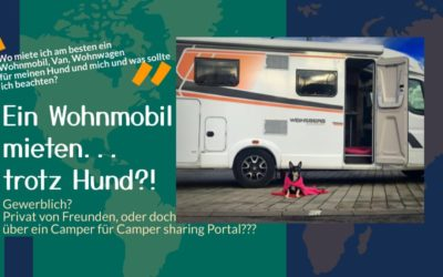 Ein Wohnmobil mieten mit Hund! Die wichtigsten Unterschiede zwischen privaten sharing Plattformen, freundschaftlichen Angeboten und gewerblichen Vermietern?